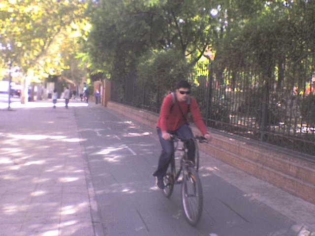 Cyklistická doprava v Seville