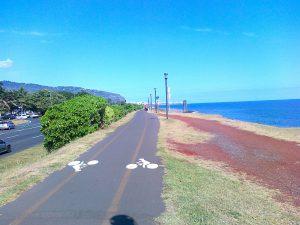 Sportovní cyklostezka podél pobřeží.