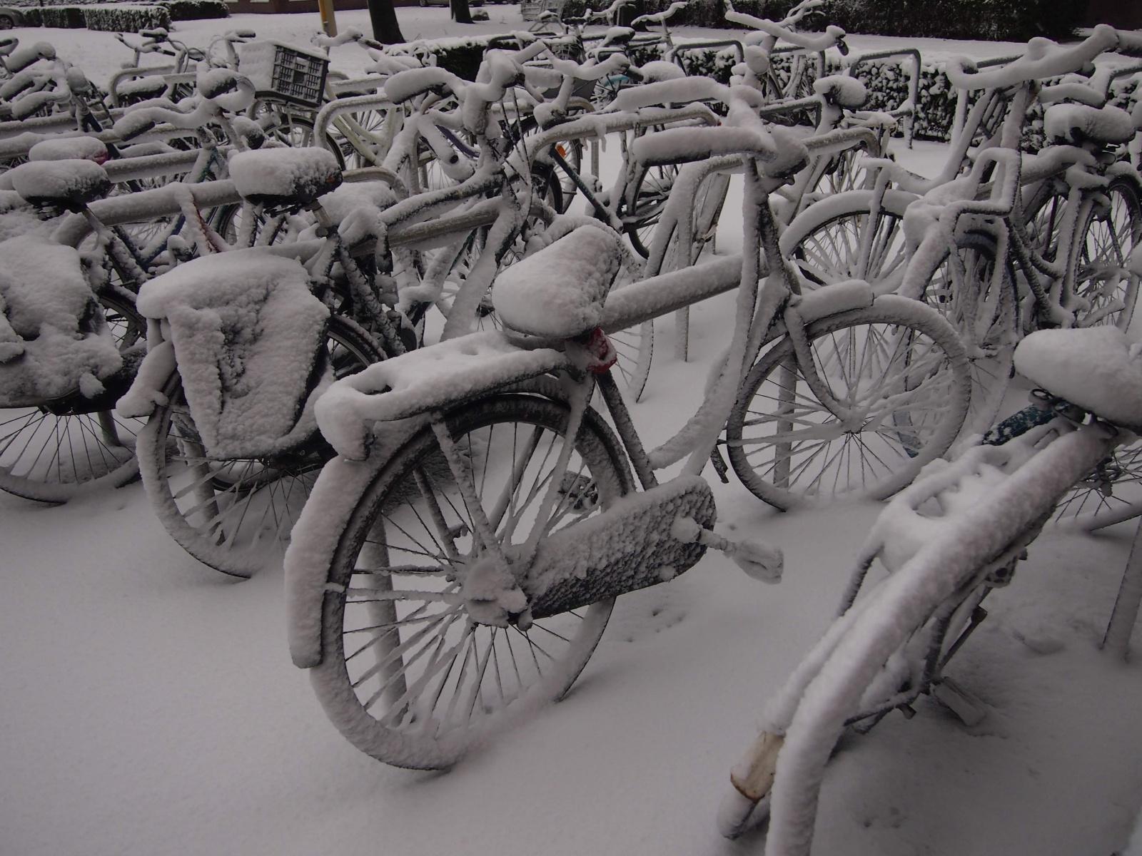 V dešti a sněhu, Utrecht na kole